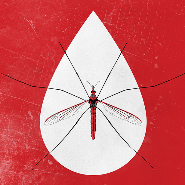 Mosquito Song Illustration By Alexander Hofstetter